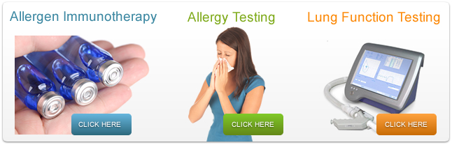 allergy home services